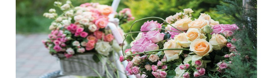 Regalos Originales ✅  ¡Para sus flores o regalos de las plantas!